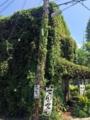 [沖縄][那覇][沖縄そば]世界遺産・識名園近くの住宅街にそびえる蔦の館