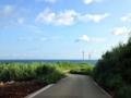 [沖縄][古宇利島]ホントにこの先にあるのかなって不安を振り払いつつ向かいます