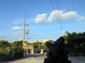 [沖縄][南城][沖縄そば]店頭のシーサーから見た視点、穏やかなひと時