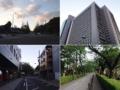 [三田][田町][ラーメン][ラーメン二郎][健康]神宮外苑いちょう並木や伊藤忠商事本社ビルあたりから南下