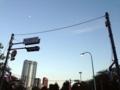 [三田][田町][ラーメン][ラーメン二郎][健康]高い建物がないため、大都会港区で空がとても広く感じられる青山霊園
