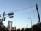 高い建物がないため、大都会港区で空がとても広く感じられる青山霊園