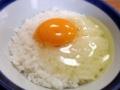[大阪][千日前][和食][蕎麦][うどん][定食・食堂]あらかじめライスの上に乗って登場した玉子かけごはん
