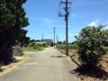 [沖縄][波照間島][菓子][かき氷][カフェ・喫茶店][海][風景][旅][2016]集落内はこんな感じで人の気配を漂わせております