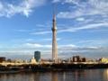 [浅草][スカイツリー][入谷][菓子][甘味処][漫画][孤独のグルメ]隅田川の対岸に構える東京スカイツリー