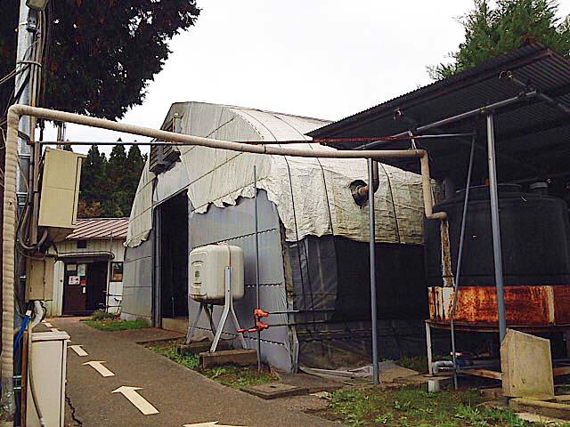 売店すぐそばのジャンボしいたけハウス@千葉「佐倉きのこ園」