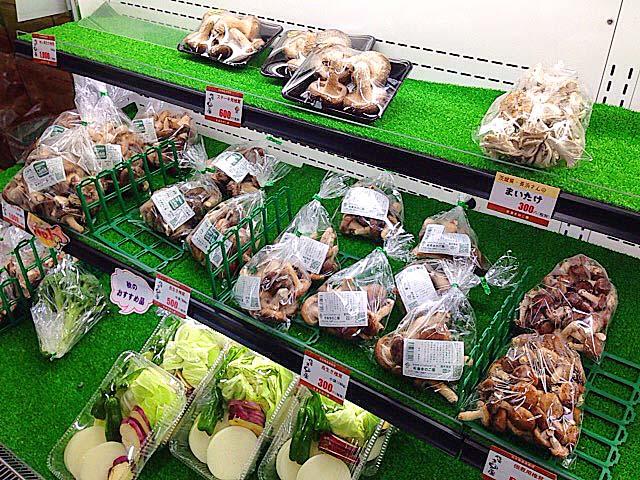 ジャンボしいたけ以外にも地元農家産の野菜も買える千葉「佐倉きのこ園」