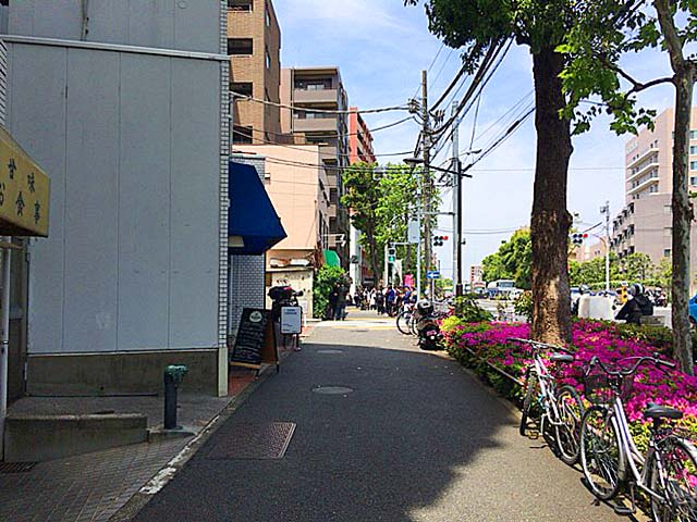 基本的にのんびりお散歩できそうな雰囲気の環七通り沿い