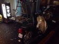 [新宿][新宿御苑前][ラーメン][カレー]出前用のオートバイ@新宿御苑前「そば処 更科」