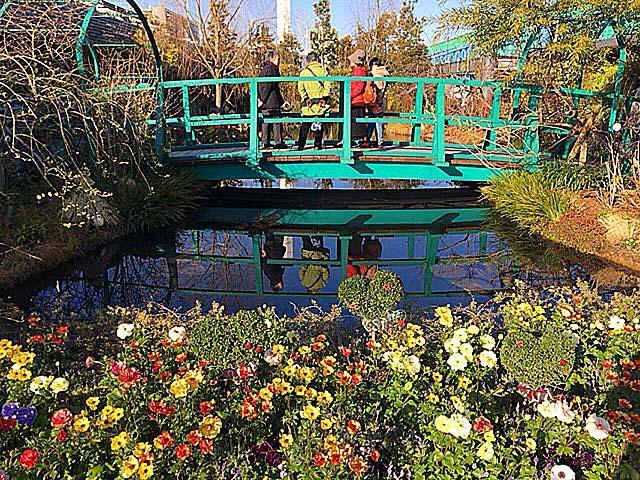 西武池袋本店屋上「食と緑の空中庭園」の睡蓮の庭