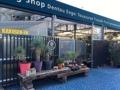 [池袋][デパート][うどん][漫画][孤独のグルメ]西武池袋本店9Fのサボテン・多肉植物専門店「鶴仙園」