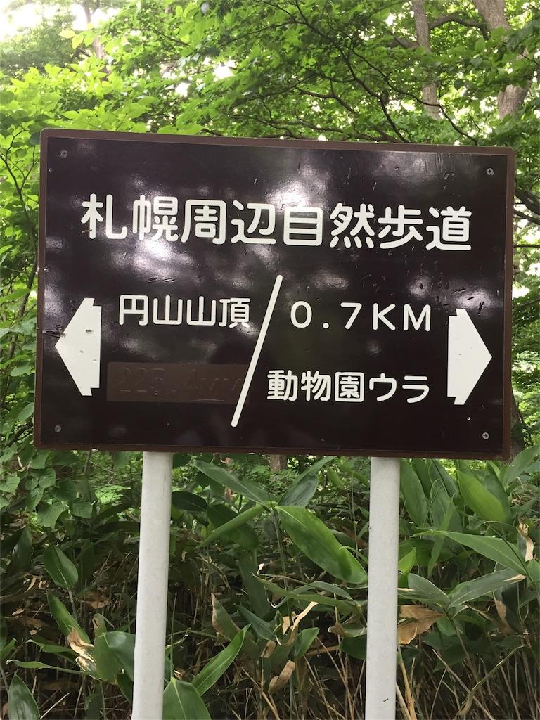 f:id:tigger-soukai:20170702114652j:image