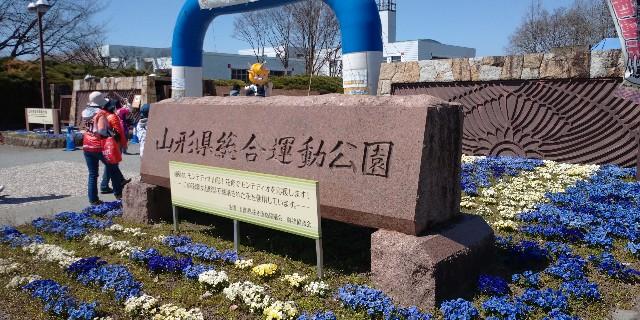 f:id:tihouno-takudora:20210411210228j:plain