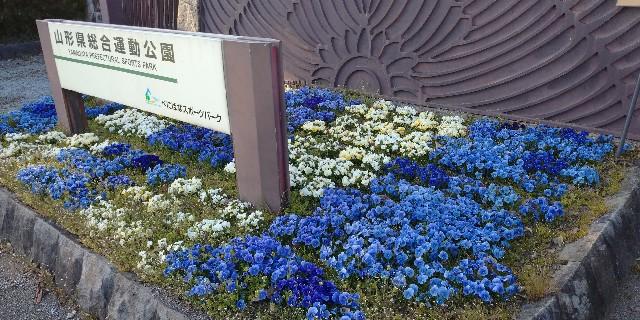 f:id:tihouno-takudora:20210411210457j:plain