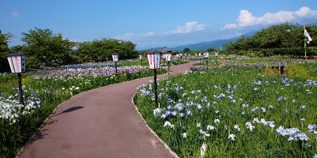 f:id:tihouno-takudora:20210615225010j:plain