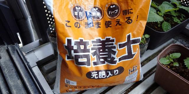 f:id:tihouno-takudora:20210627105221j:plain