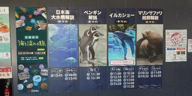 f:id:tihouno-takudora:20210921161355j:plain
