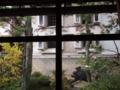 f:id:tikuri-8:20121201125717j:image:medium