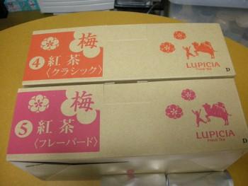 f:id:tikuwa1:20110104144715j:image