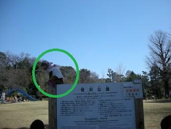 f:id:tikuwa1:20110319112546j:image