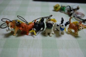 f:id:tikuwa1:20120610202701j:image