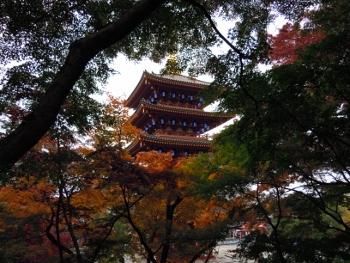 f:id:tikuwa1:20161121085601j:image