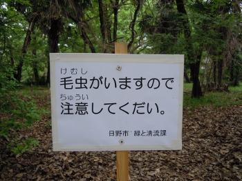 f:id:tikuwa1:20180424083113j:image