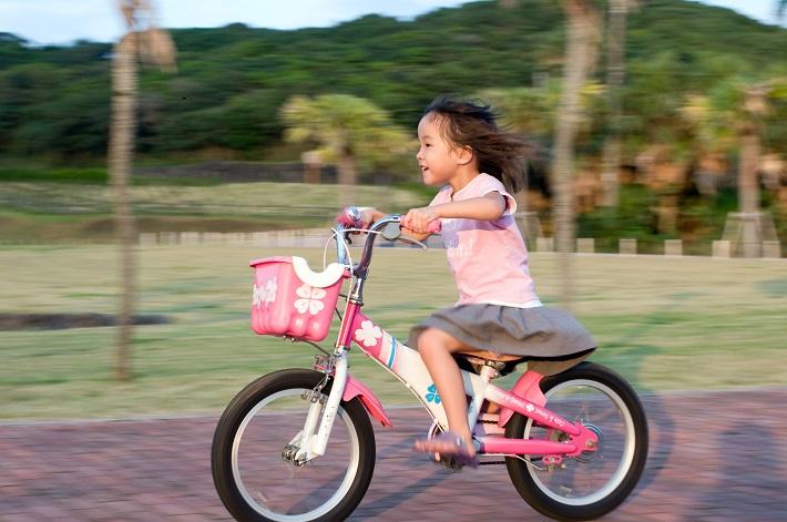 【家計マネー塾】 第4回 わが子が加害者!?自転車事故にどう ...