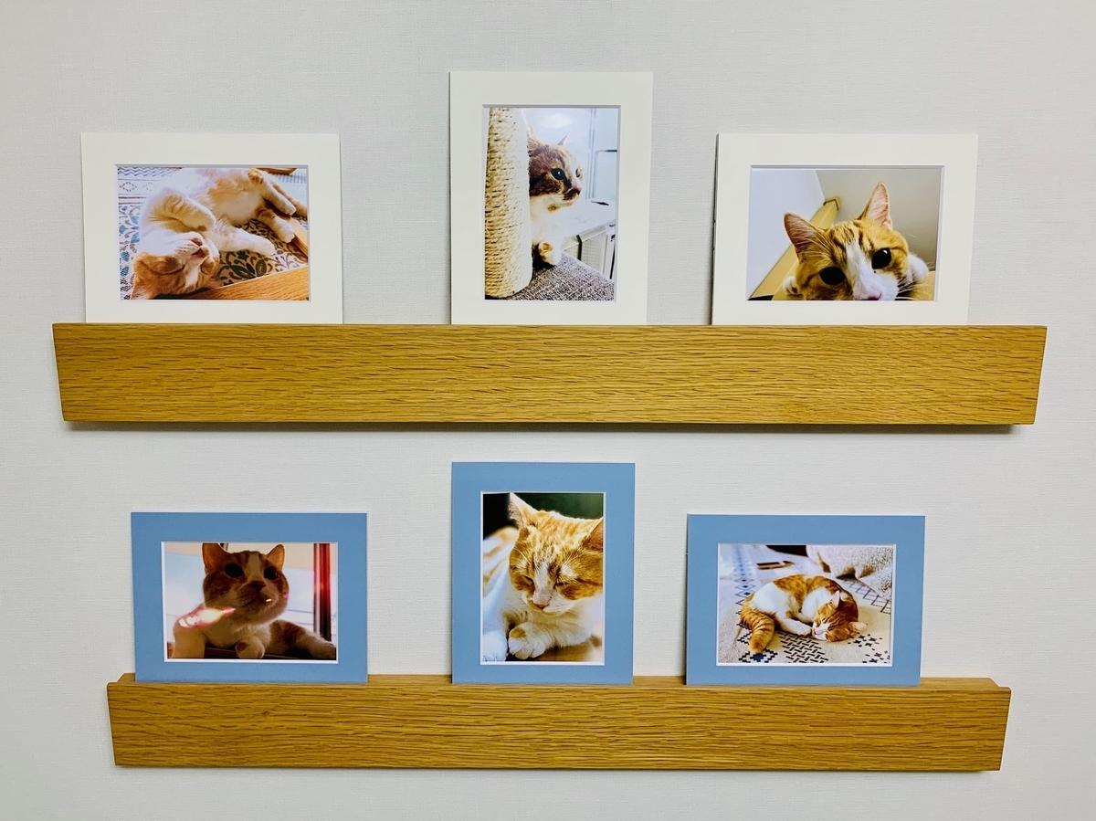 るるちゃんの写真を飾っている壁2