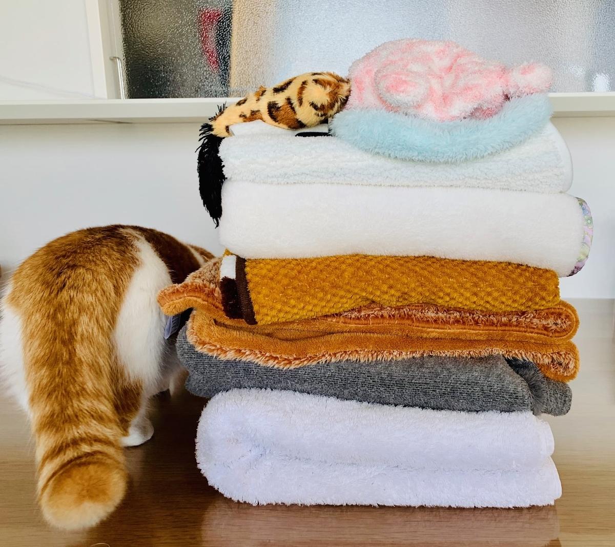たたんだ洗濯物