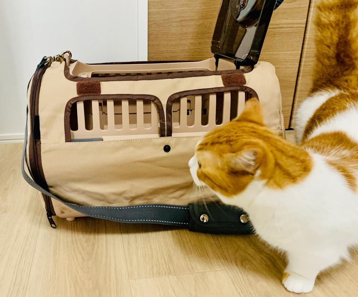 リッチェルのキャリーバッグとるるちゃん