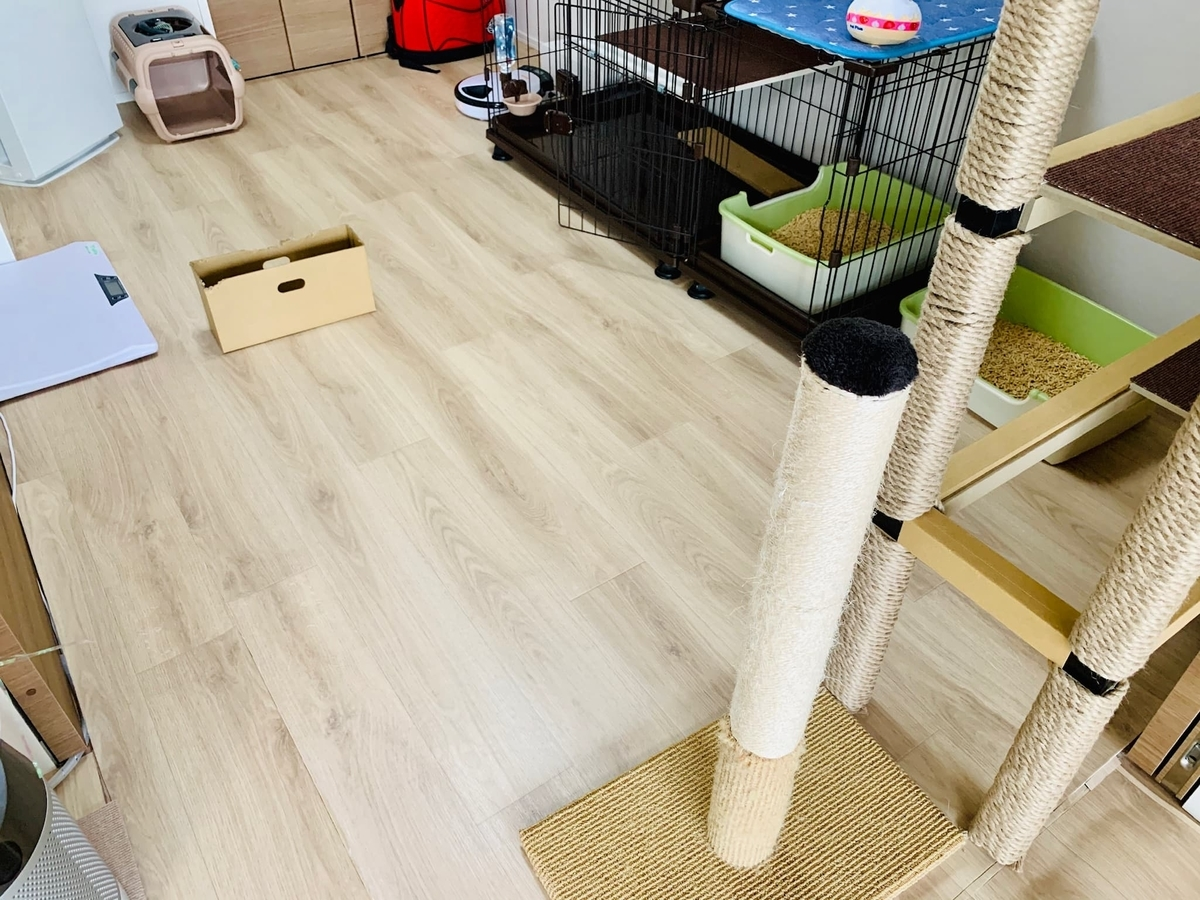 猫部屋のクッションフロア
