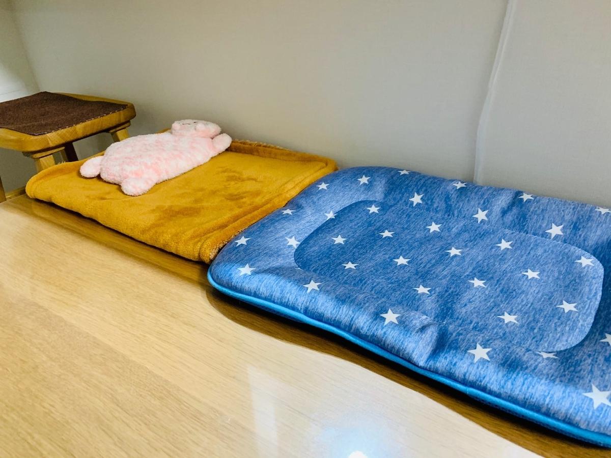 るるちゃん不在のダイニングテーブルのお昼寝スペース