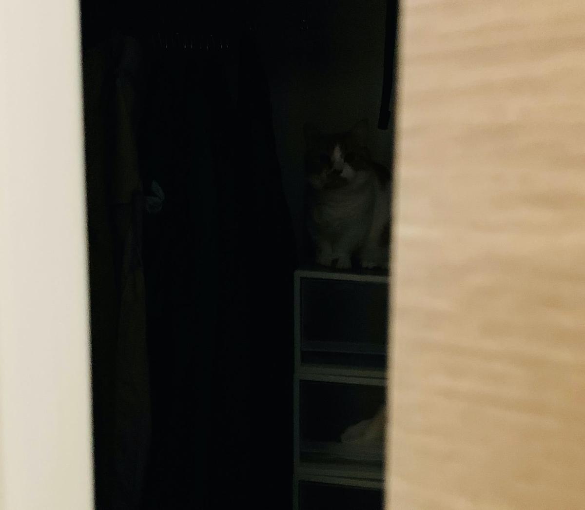 寝室のクローゼットに潜むるるちゃん2