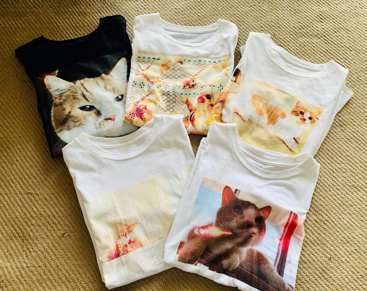 愛猫のTシャツ2