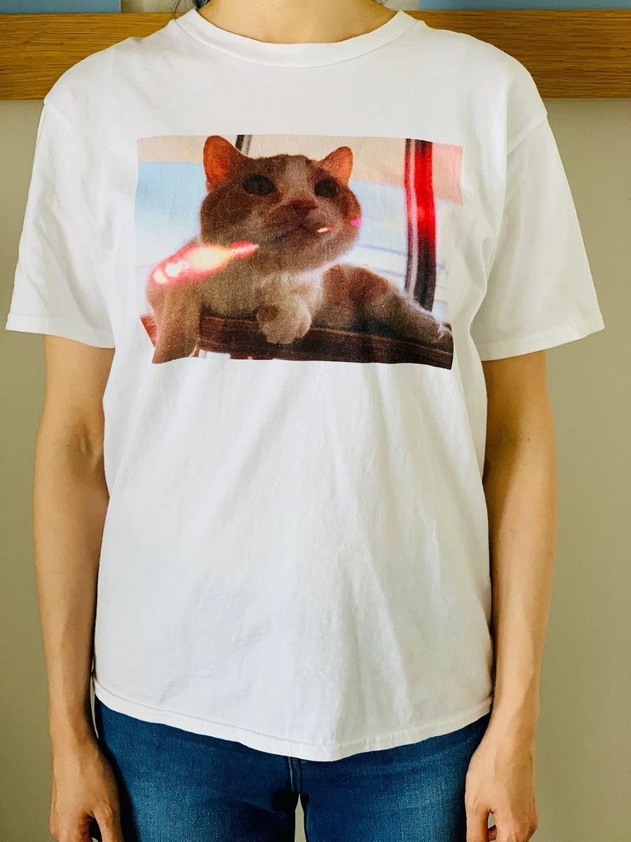 愛猫のTシャツの試着感1
