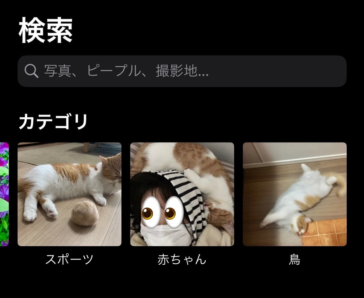 iphoneカメラの検索機能3