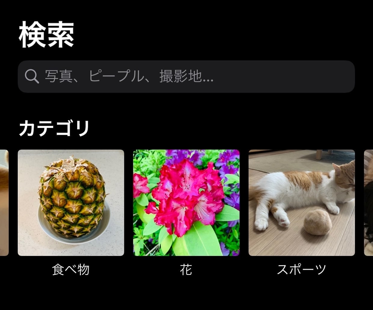 iphoneカメラの検索機能2