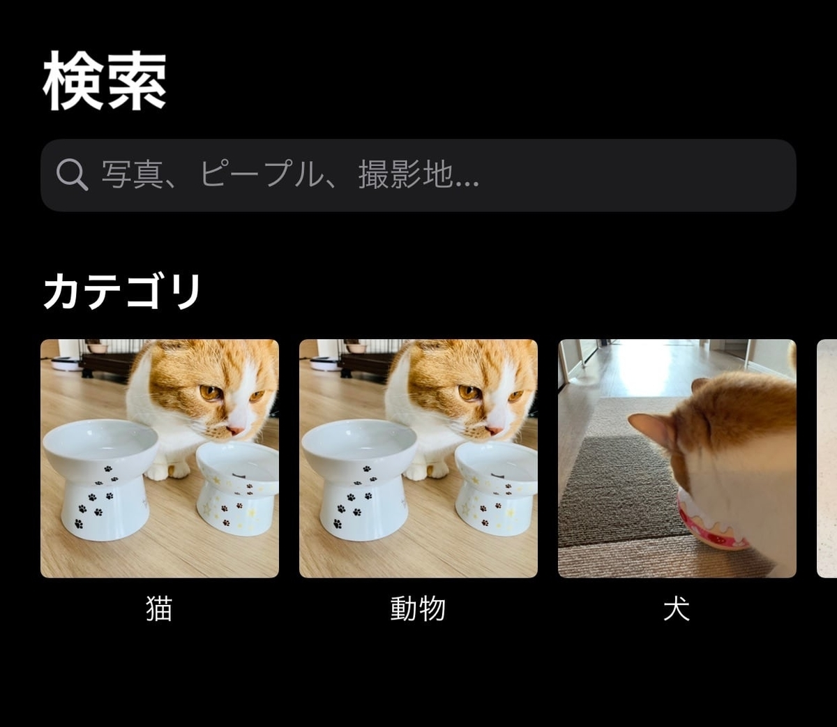 iphoneカメラの検索機能1