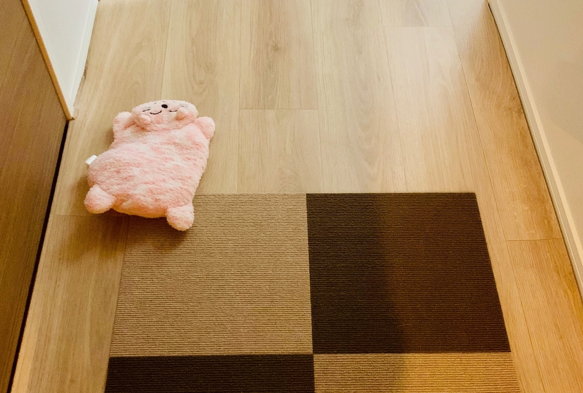 床に落ちている猫のぬいぐるみ