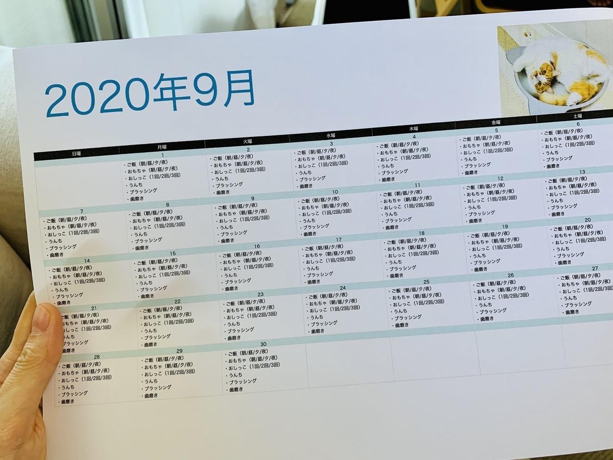9月のタスクカレンダー