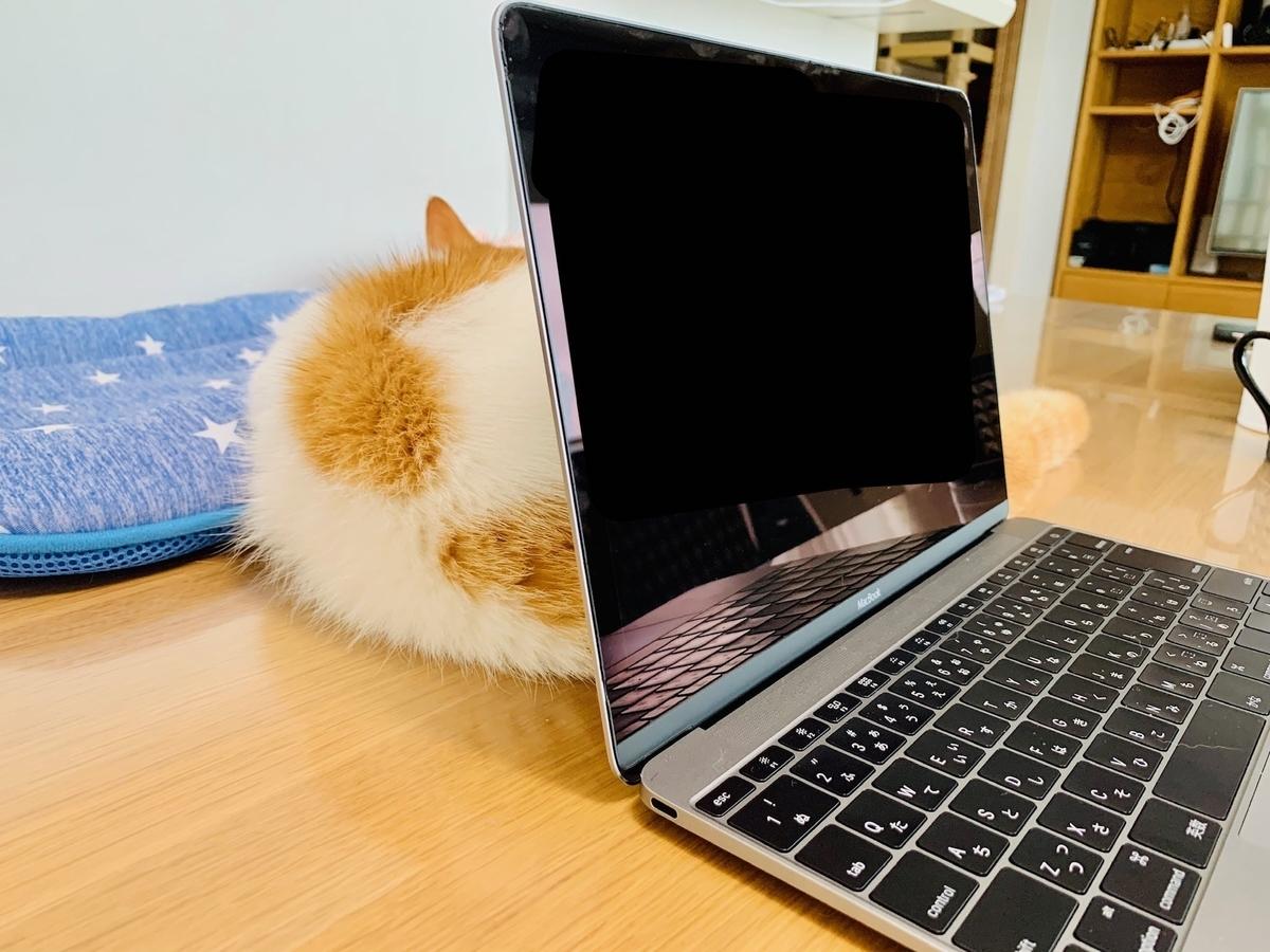 パソコンの裏側3
