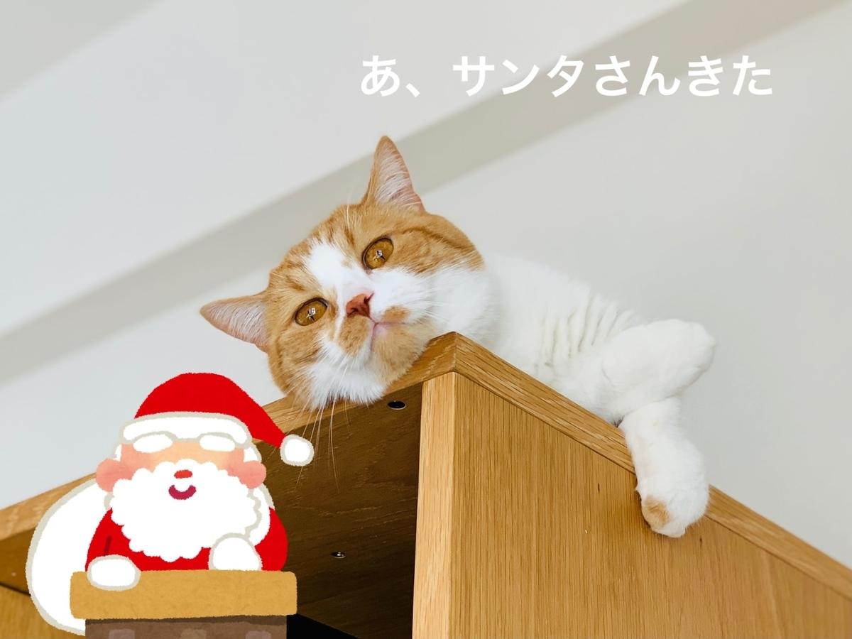 サンタさんがくるところを目撃してしまったるるちゃん