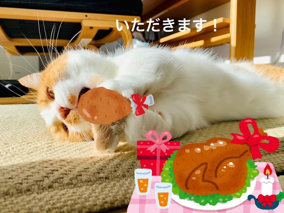 プレゼントのチキンを食べるるるちゃん
