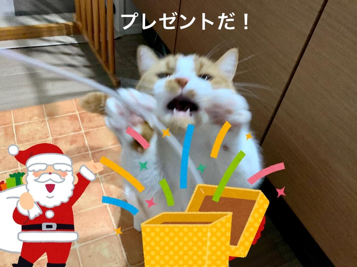サンタさんからプレゼントをもらうるるちゃん