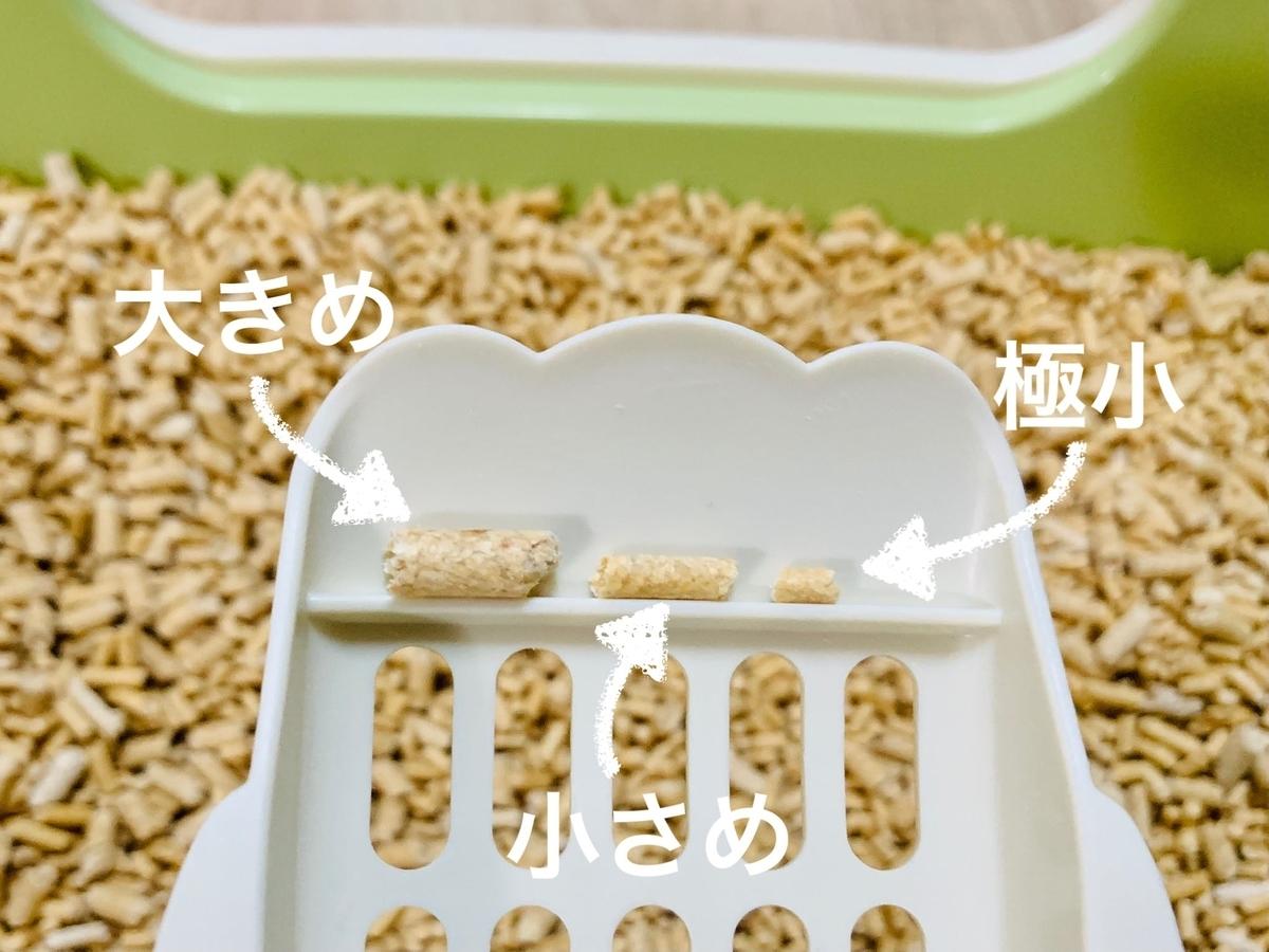 3種類の砂のサイズ比較