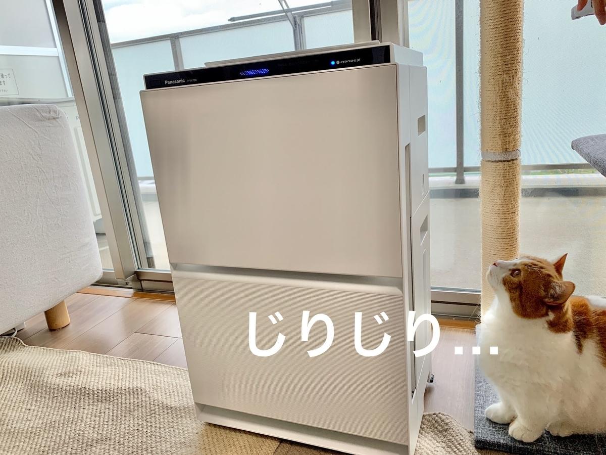 新しい空気清浄機とるるちゃん2