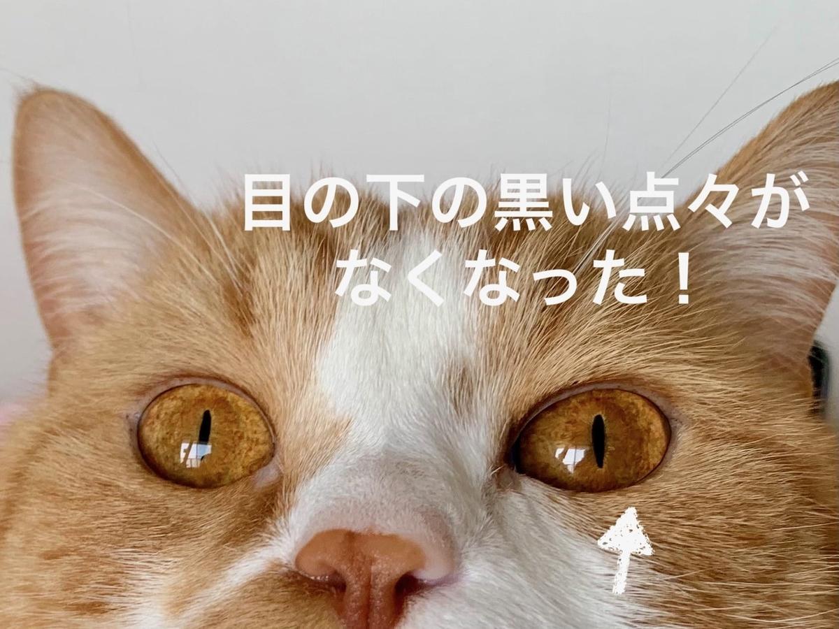 るるちゃんの目2