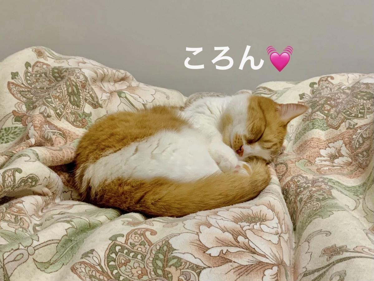 天使の寝顔のるるちゃん3