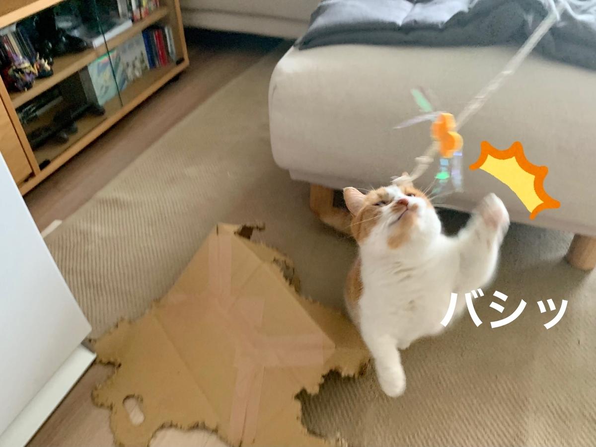 紙紐のおもちゃとるるちゃん2